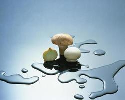 cogumelos frescos para cozinhar foto