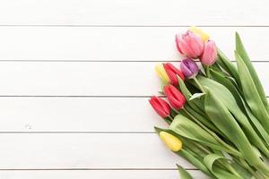 buquê de tulipa em fundo branco de madeira foto