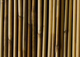 close-up de fundos de padrão de textura de bambu foto