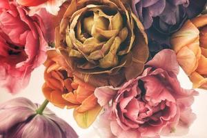 tulipas coloridas em estilo vintage foto