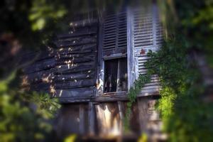 edifício antigo abstrato abriga janelas foto