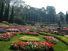 flores no jardim botânico da Índia, coloridas e bonitas foto