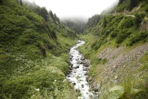 mar negro, vila rize cat creek, turquia, vista foto