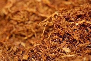 folha de tabaco enrolando close up moderno banco de imagens foto