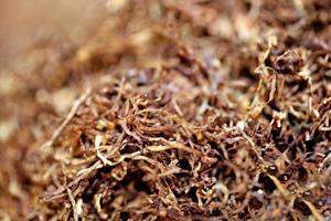 folhas de tabaco rolando close up background stock photography prints foto