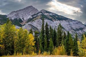 Mount Baldy Pass. área selvagem do vale do arco. Alberta, Canadá foto