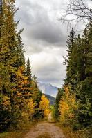 Mount Baldy Pass Kananaskis Country Alberta Canada foto