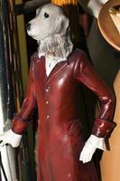 doce brinquedo animal para cachorro com um casaco vermelho foto