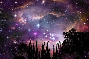 nebulosa na galáxia sobre a silhueta da árvore no céu noturno da montanha foto