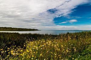 parque provincial de Aspen Beach. Alberta, Canadá foto