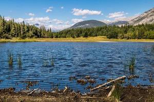 vistas do vale. Parque provincial de Bow Valley. Alberta, Canadá foto