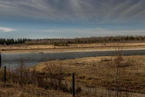 rio de veado vermelho. markerville na, red deer county, alberta, canadá foto