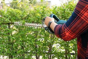 jardineiro segurando o corta-sebes elétrico para cortar a copa das árvores no jardim. foto