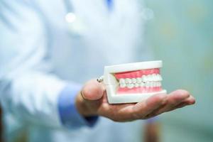 médico dentista segurando o modelo dental de dentes para aprendizagem. foto