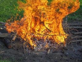 chama de fogo ardente foto