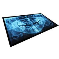 raio x médico de dentes foto