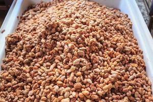 grãos de cacau frescos e sementes de cacau frescas em um balde para fazer chocolate foto