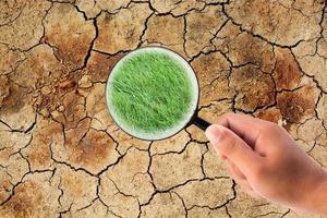 mão segurando uma lupa encontrando grama em terra seca e rachada foto