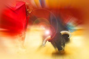 lutando com o touro foto