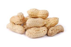casca de amendoim isolada no branco foto