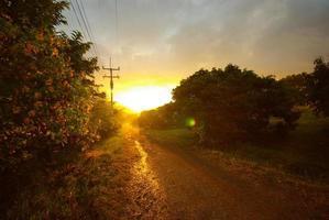 sol do pôr do sol e uma estrada de terra no campo foto