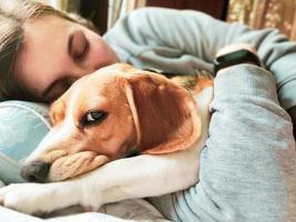 menina e cachorro beagle dormem juntos. garota abraça um cachorro. animal doméstico. Ame. foto