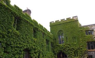 Abadia de Westminster em Londres foto