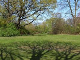 parque tiergarten, berlim foto