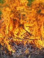 queimando chamas de fogo foto