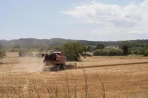 o veículo da bela paisagem rural foto
