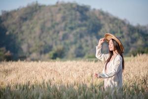 Agricultora vietnamita em campo de colheita de trigo foto