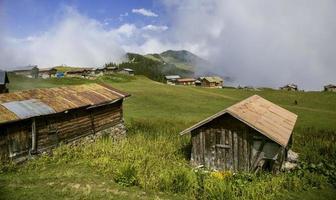 sal plateau, rize, turkey, highland view, natural landscape foto