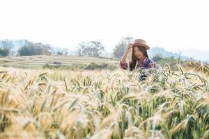 mulher agricultora com época de colheita do campo de cevada foto