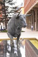 castela, espanha, 2021 - escultura de um touro bravo foto