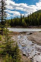 rio de ovelhas fluindo rápido no início da primavera ao longo da costa em Alberta, Canadá foto