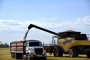 combinar o carregamento de um caminhão de grãos foto