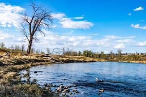 o rio de proa flui pelo parque sob o olhar atento da cidade foto