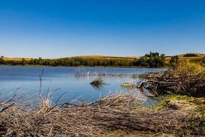 uma grande vista do pequeno lago de peixes foto