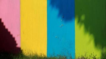 paredes coloridas, com sombras de árvores formando um ornamento único foto