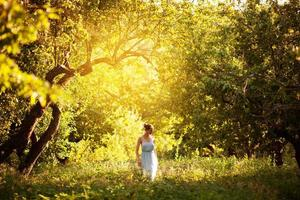 mulher em um vestido azul caminha pelo pomar de maçãs foto