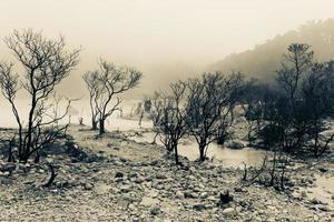 terra morta perto da cratera foto