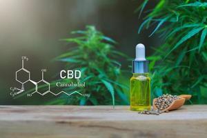 elementos cbd em cannabis, óleo de cânhamo. óleo de cânhamo saudável. foto