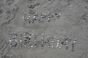 mensagem de feliz aniversário em conchas foto