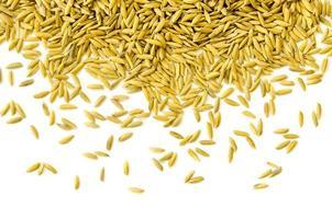 vista de cima arroz em casca e semente de arroz, grão de arroz integral e pilha de arroz. foto