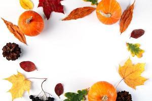fundo de outono de folhas, frutos e abóboras. foto