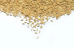 fundo e papel de parede por pilha de arroz em casca e sementes de arroz. foto