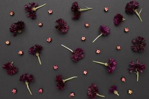 as flores de composição da vista superior foto