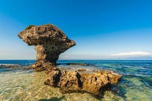 vaso de flores rocha coral na ilha lamay no condado de pingtung, taiwan foto