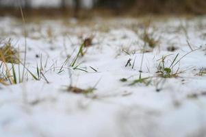 pouca neve inverno pequena foto