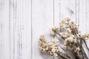flores brancas secas em madeira branca foto